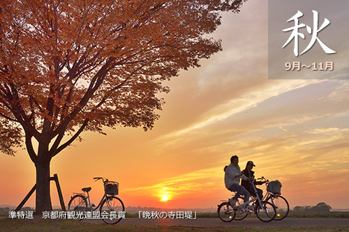 JR関西本線秋