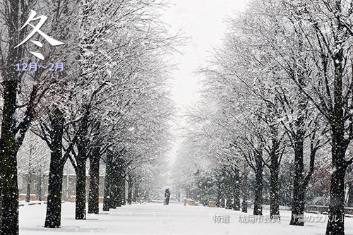 JR関西本線冬
